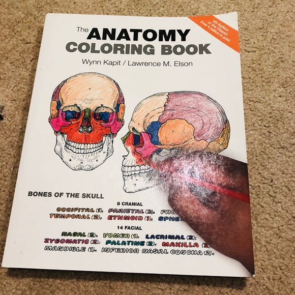 - Other Anatomy Coloring Book Poshmark